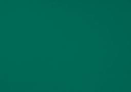 Акриловая ткань DICKSON ORC 0003 Светло-зеленый 120см