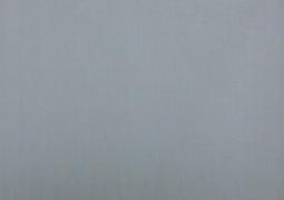 Акриловая ткань DICKSON ORC 7552 Серебро 120см