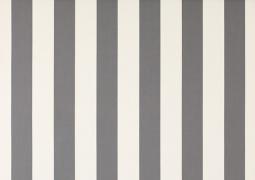 Акриловая ткань DICKSON ORC 8907 Бело-серые полосы 120см