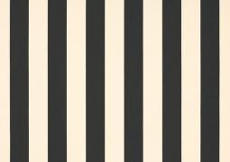 Акриловая ткань DICKSON ORC 8919 Крем-черный 120см